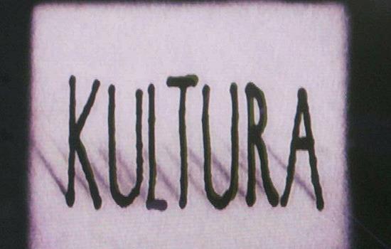"""A che cosa è ridotta la """"cultura""""?"""