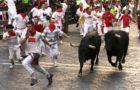 Le nostre tradizioni ancestrali: l'uomo e il toro