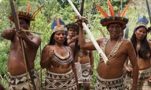 imagen-indigena