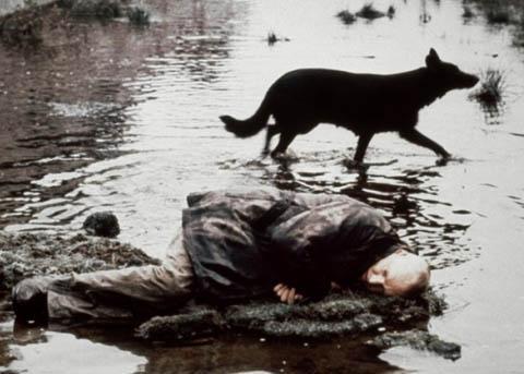 Tarkovskij ha voluto mostrare l'Ombra della nostra civiltà e sollecitare una conversione