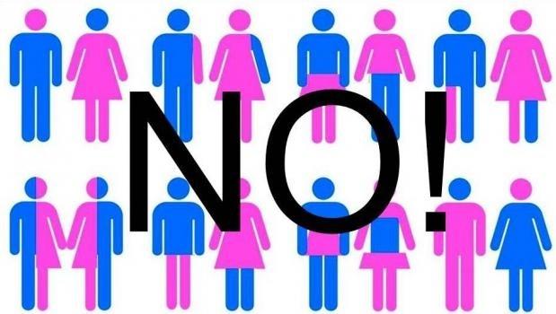 """Convegno: """"Sviluppo della personalità e identità di genere"""" (Ladispoli, 11 set. 2015)"""
