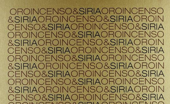 Gianni Limonta e Adonis, Oro, incenso & Siria, Mondadori Electa, Milano 2005