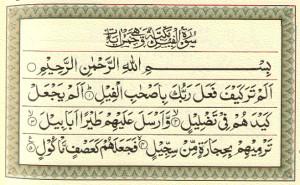 """La sura 105, """"dell'elefante [al-Fîl], nella quale, oltre all'eco di un evento storico vi è l'insegnamento sul totale e fiducioso abbandono a Dio"""