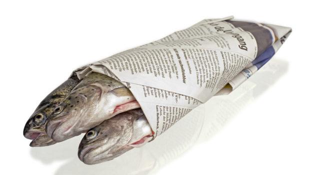 Sui giornali ed i loro lettori